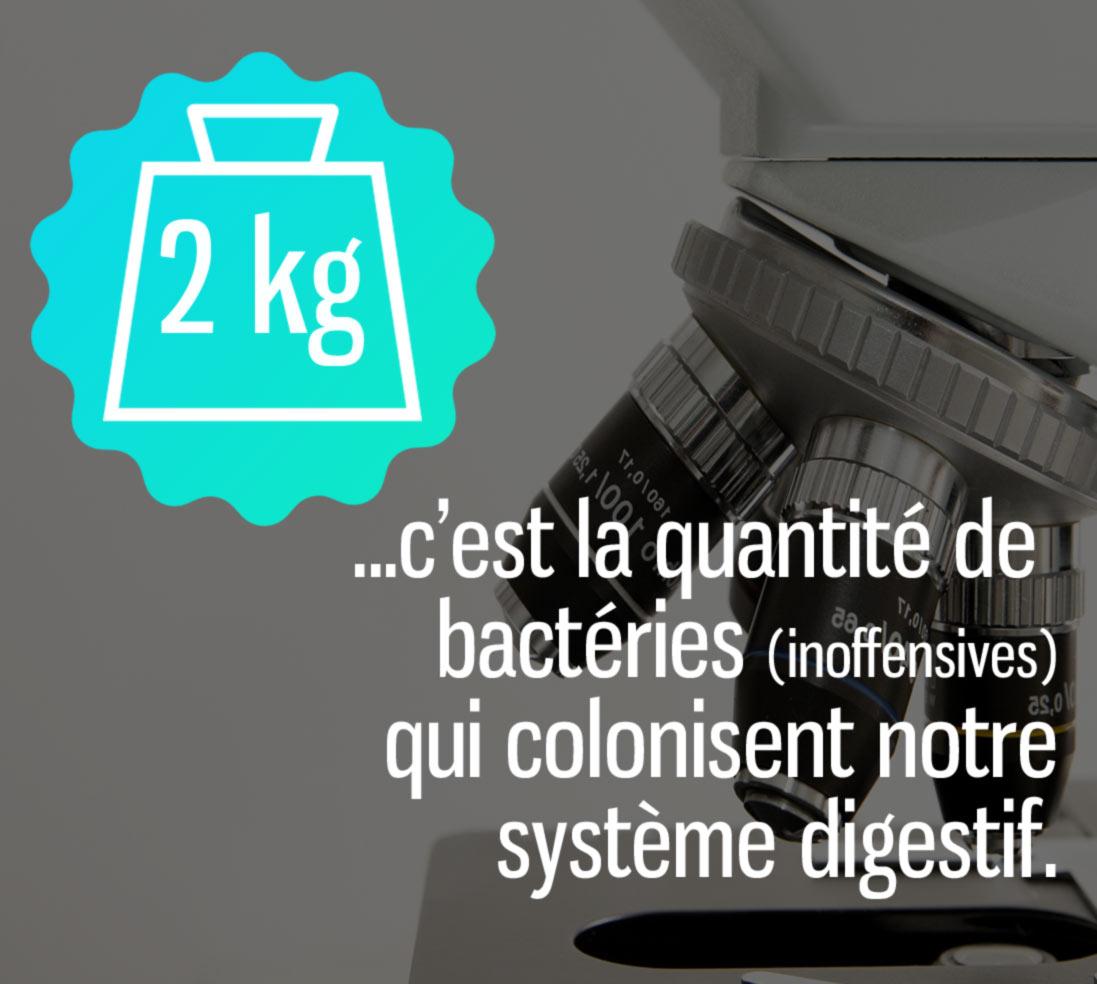 poids des bactéries dans le corps